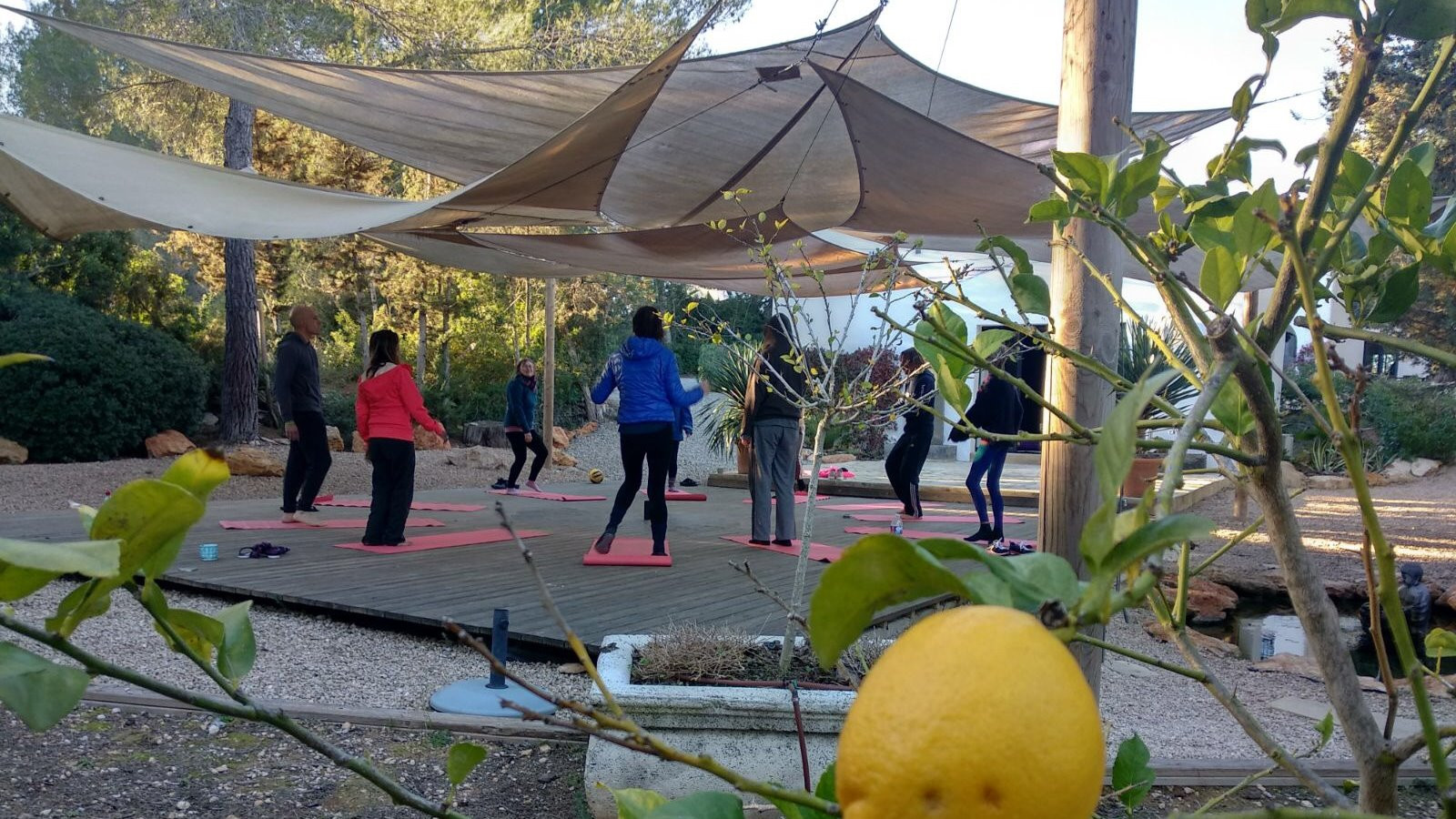 Image 12 of 12 - Experience Yoga to get an impression of WHM Travel Experience at Sant Llorenc de Balafia