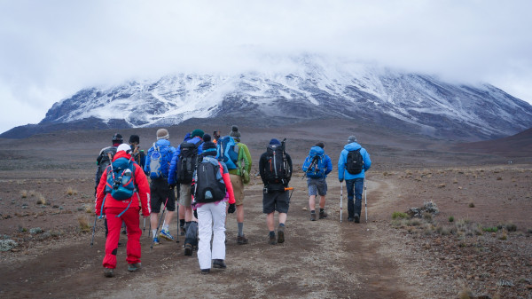 Image 8 of 9 - Experience Nature to get an impression of Kilimanjaro Expedition 2020 at Mount Kilimanjaro